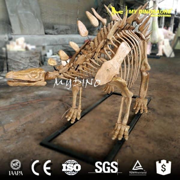 dinosaur stegosaurus skeleton