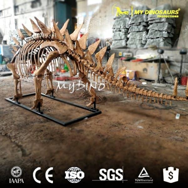 fiberglass stegosaurus skeleton