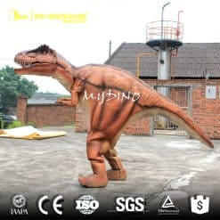 Dinosaur Costume for Event