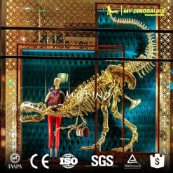 Showcase decoration golden dinosaur skeleton 10