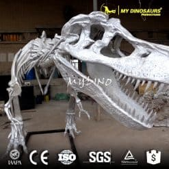silver dinosaur skeleton for sale