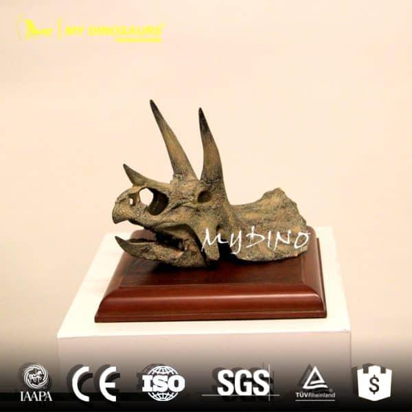 Mini triceratops skull 2