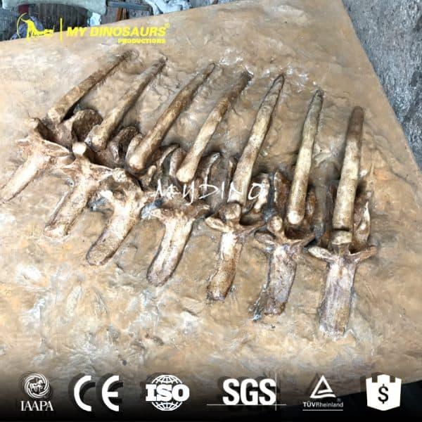 T REX rib skeleton 1