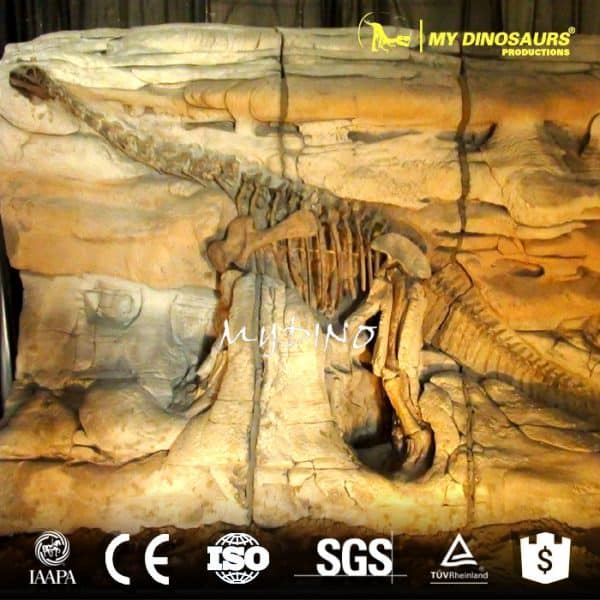 dinosaur fossil wall for sale
