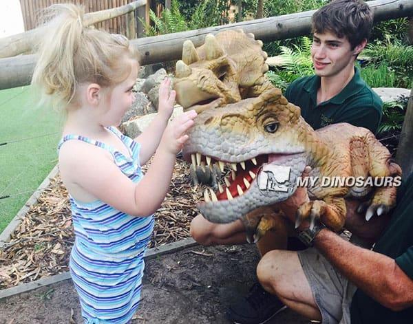 Dinosaur exhibition attractions.4