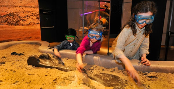 fossil digging