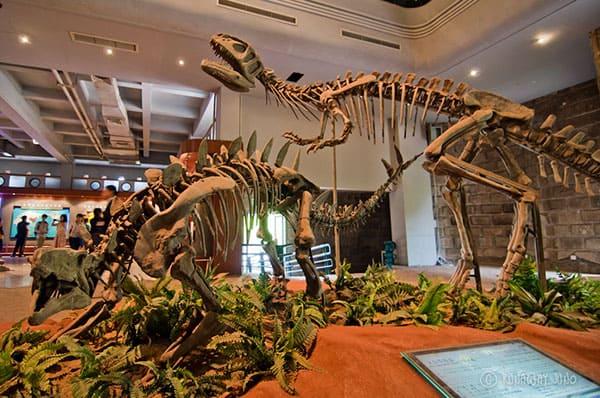 Zigong Dinosaurs Museum, China