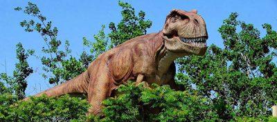 Dinosaur Park Adventure 1