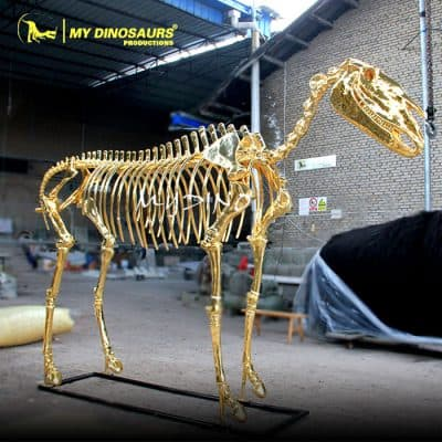 Golden Horse Skeleton 1