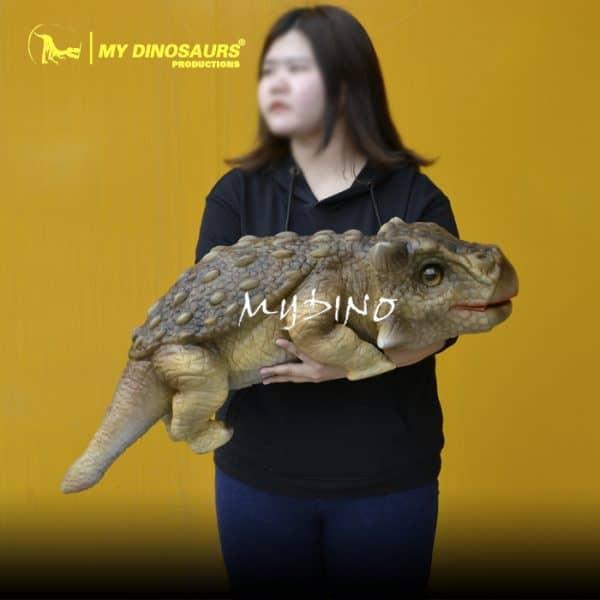 baby ankylosaurus 1