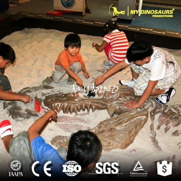 dinosaur fossil excavation