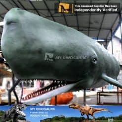 whale replica 2