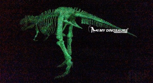 Fluorescent dinosaur skeleton