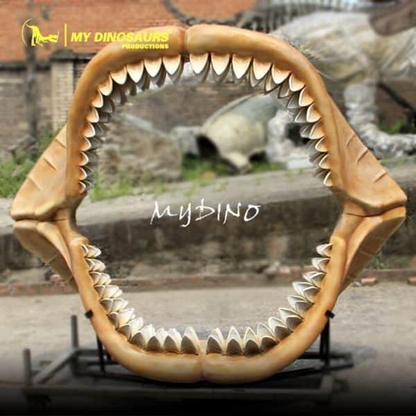 Megalodon shark jaw