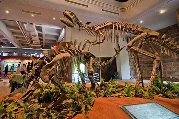 Zigong Dinosaurs Museum China