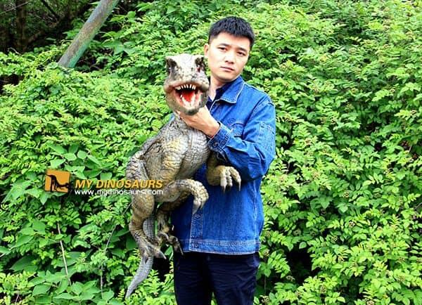 baby dinosaur hand puppet 5