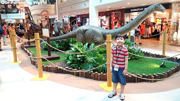 Dinosaur Fossil Replica Exhibition In Shopping Mall And Outlets