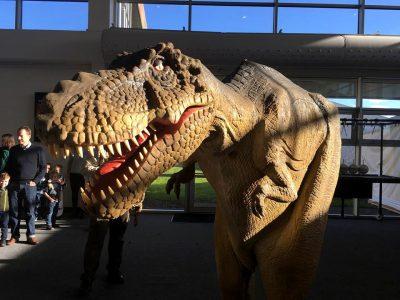 dinosaur costume feature 2