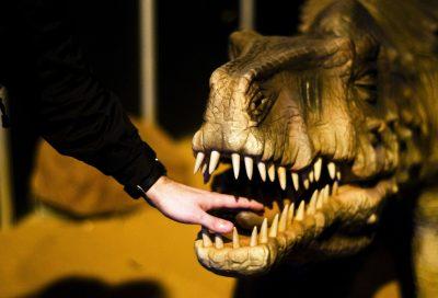 animatronic dinosaurs production 1