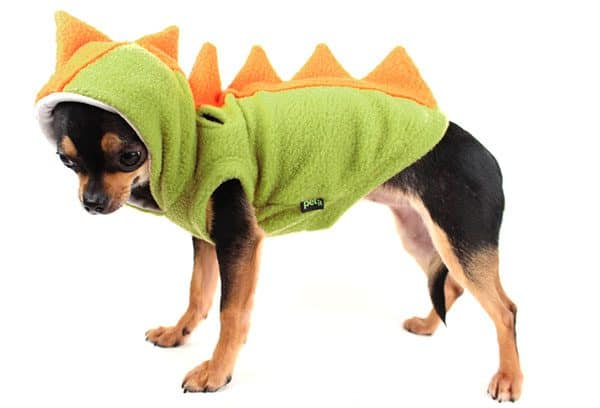 pet dinosaur suit