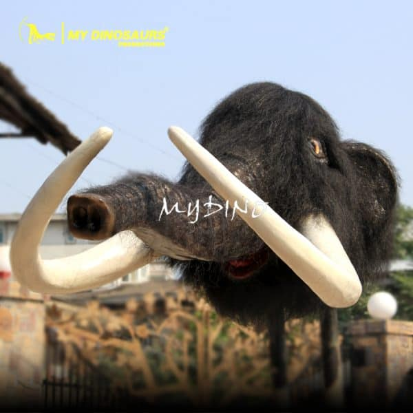 decorated mammoth head 1