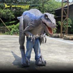 Raptor costume