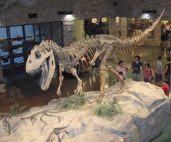 1200px Museum AL dinosaur