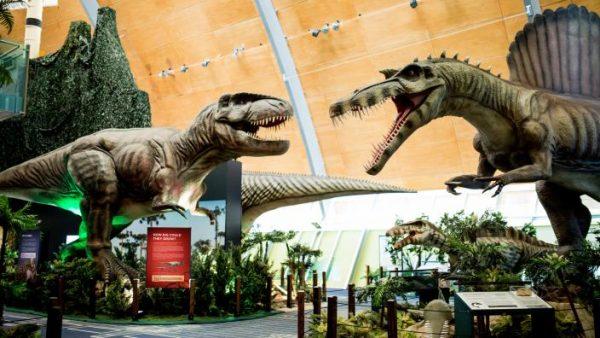 Spinosaurus 014 ED2 0