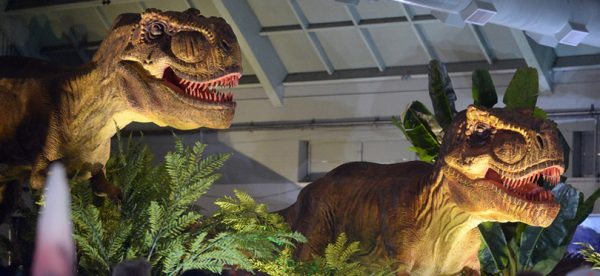 "People look at two animatronic Tyrannosaurus Rexs on display at the Jurassic Quest event held this weekend at the Alameda County Fairgrounds in Pleasanton, Calif., on Saturday, Feb. 8, 2014. The indoor exhibit features  life size, realistic animatronic dinosaurs from the Jurassic, Triassic and Cretaceous periods. Visitors can interact with the dinosaurs and learn about them and even ride a few. There will be a T Rex and Triceratops fossil digs where young paleontologists can uncover long hidden dinosaurs bones. Their is also a ""Dino Bounce"" children's play area with several, towering, dinosaur theme inflatable mazes. (Doug Duran/Bay Area News Group)"