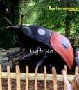 large size ladybug 1