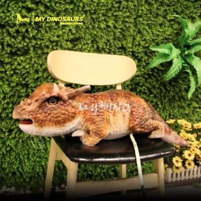 Baby Dino Pachycephalosaur 1
