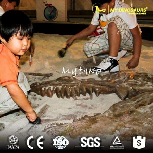 dinosaur skeleton excavation 600x600