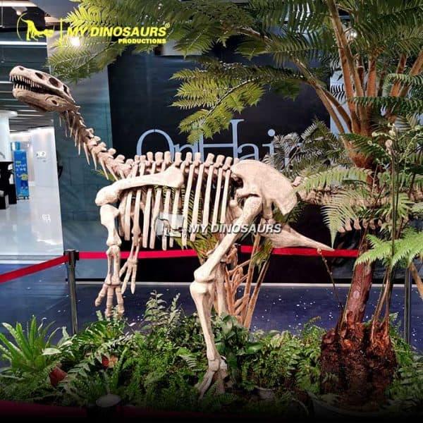 Herrerasaurus skeleton 2