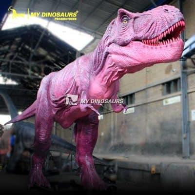 Pink Dinosaur