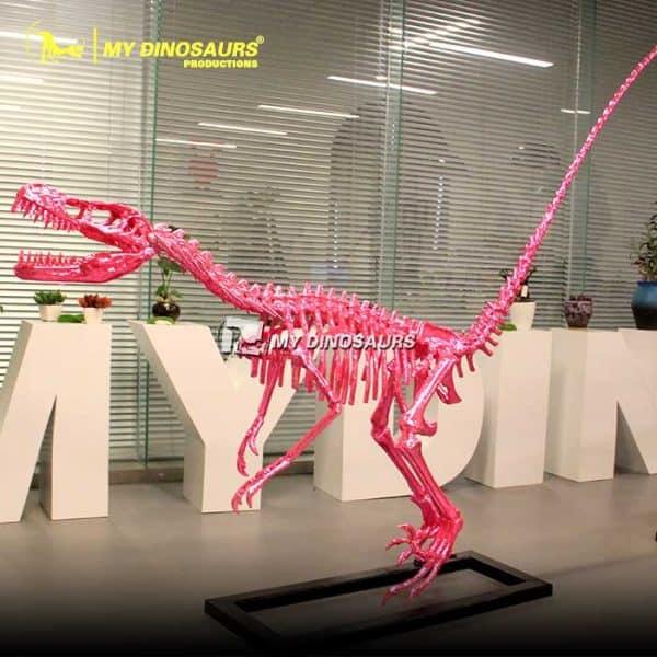 Pink Dinosaur Skeleton