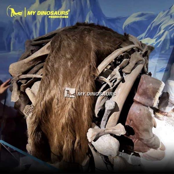 mammoth bones cave