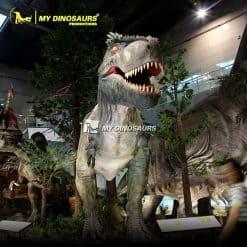 Life Size Tyrannosaurus Model