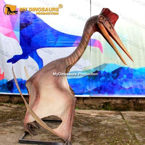 Pterosaur Model 3