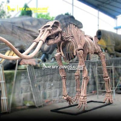 mammoth skeleton 3