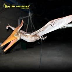 Hanging pterosaur 1