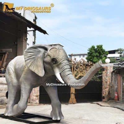 Baby elephant spray water.1