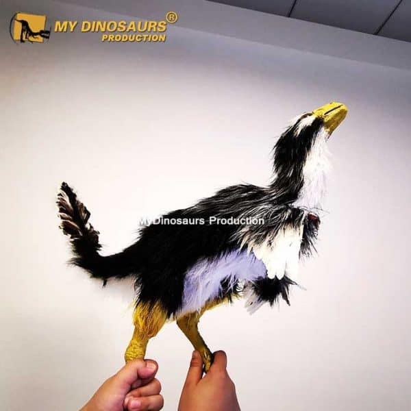 Caudipteryx statue 1