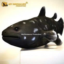 Coelacanthiformes statue