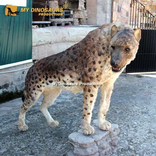 Dinocrocuta statue 2