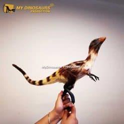 Sinosauropteryx statue 2