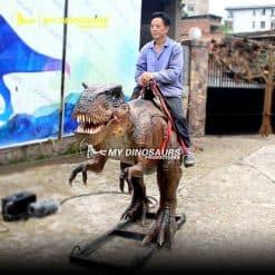 riding a dinosaur 1