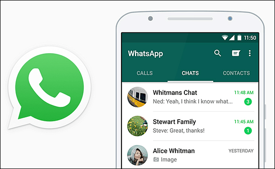 contact mydinosaurs on whatsapp