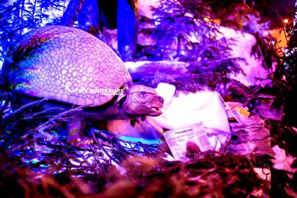 artificial ice age animal exhibition 3