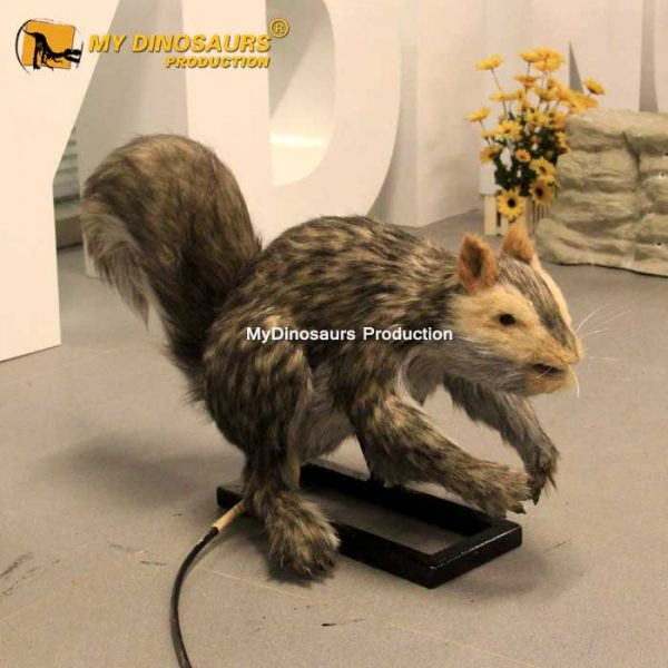 Animatronic squirrel 1