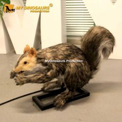 Animatronic squirrel